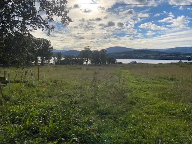 Har en potensiell villcampeplass bare 15 min fra Tromsø  Villca10