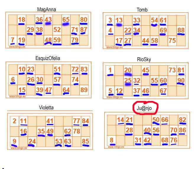 ¿Jugamos Bingo - Lotería de cartones?? - Página 2 Cartze25