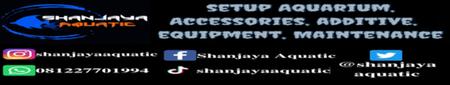 About Shanjaya Aquatic Imagee10