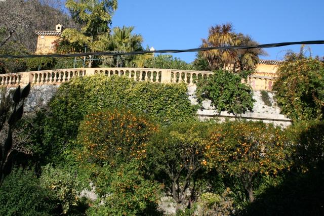 Jardin Botanique Val Rameh de Menton fin décembre 2007 Vue_ge10