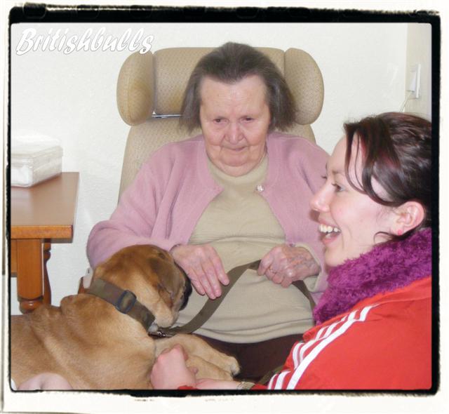 COOPER avec CAO et CHELSEA en maison de retraite !!!! Cooper11