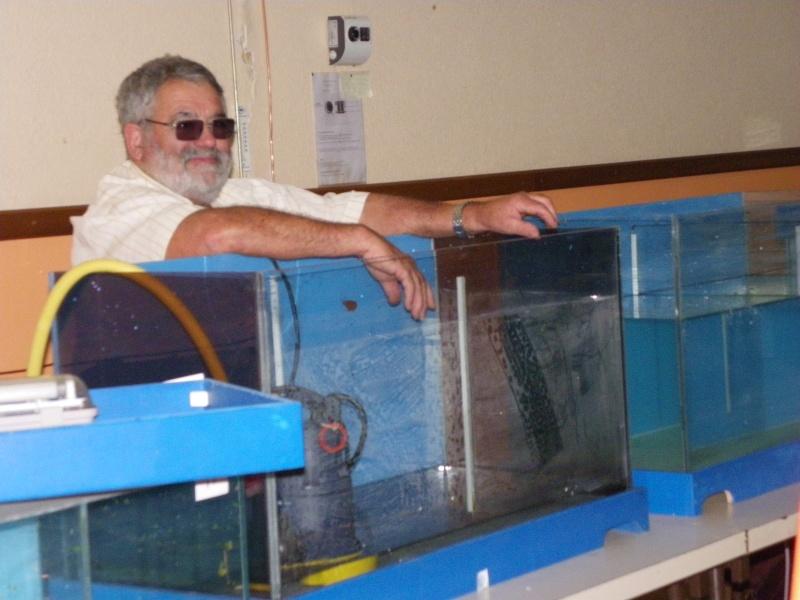 bourse aquariophile : St Hilaire de Villefranche le 17 octobre 2010 Imgp2516
