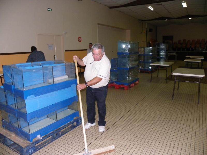 bourse aquariophile : St Hilaire de Villefranche le 17 octobre 2010 Imgp2520