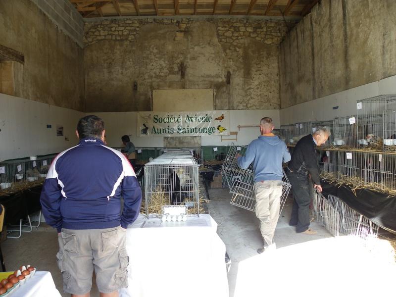 Brocante et manifestation avicole le 15 mai 2011 à Nancras Imgp8112