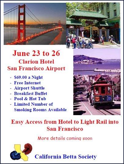 IBC Convention, San Francisco, USA, 23-26.06.2011 Ibc-co10