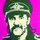 Membre du Lemmy's groupie club