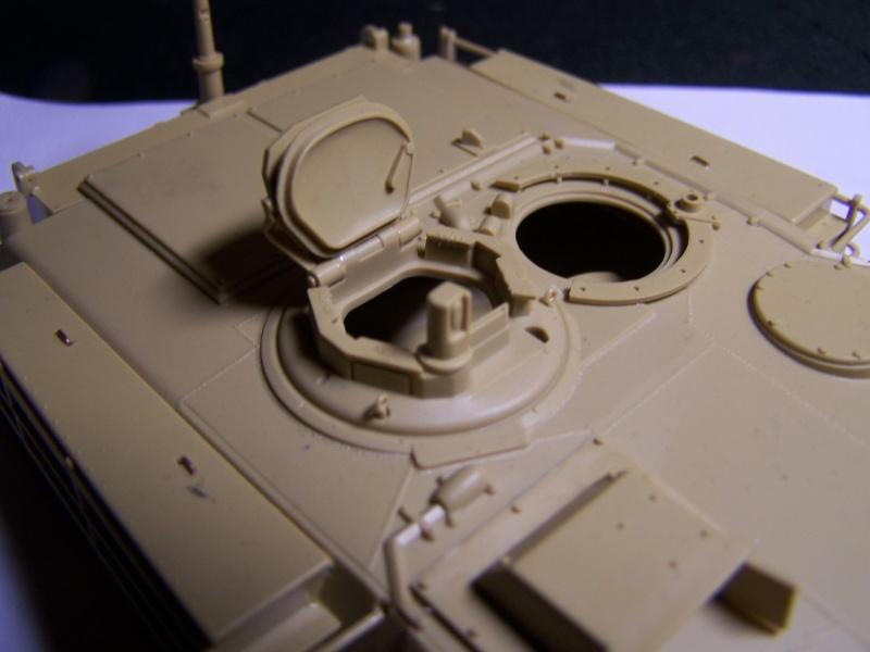 M1A1 Mine plow - Page 2 100_2713