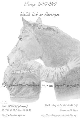 Dessin/portrait de vous ou votre cheval Res10