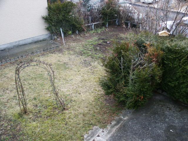 jardin à retaper... Pict0011