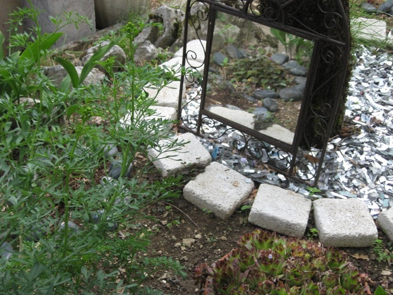 jardin de printemps Img_3221