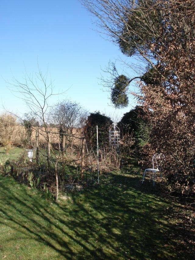 le jardin de Giroflee - Page 9 10020814