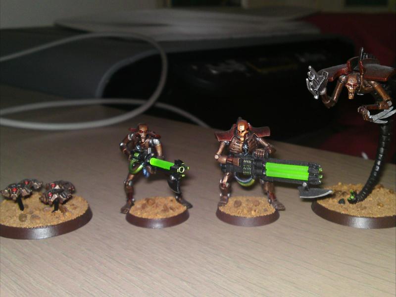[Avendre] armées nécrons peinte 04610