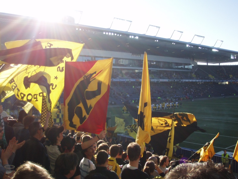 BSC YB ... YOUNG BOYS P2240411