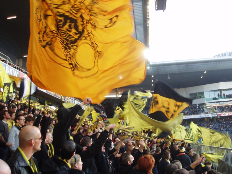 BSC YB ... YOUNG BOYS P2240413