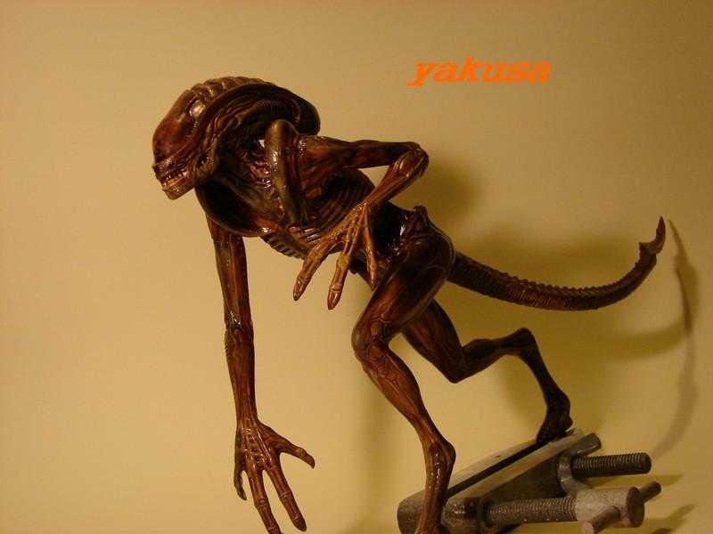 alien halcyon 1/9 by yakusa Dsc00617