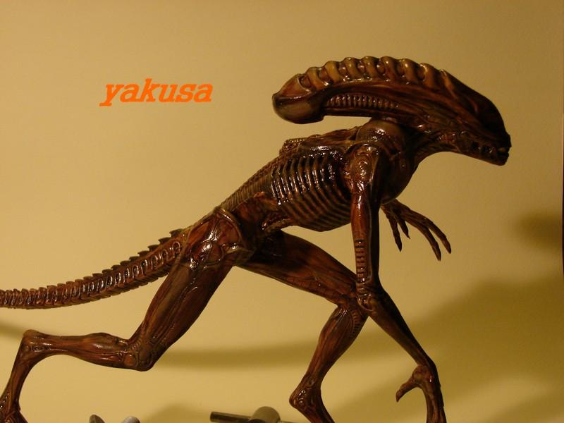 alien halcyon 1/9 by yakusa Dsc00619