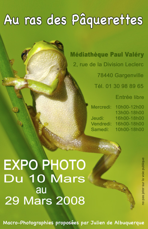 exposition photo d' insectes Petite10