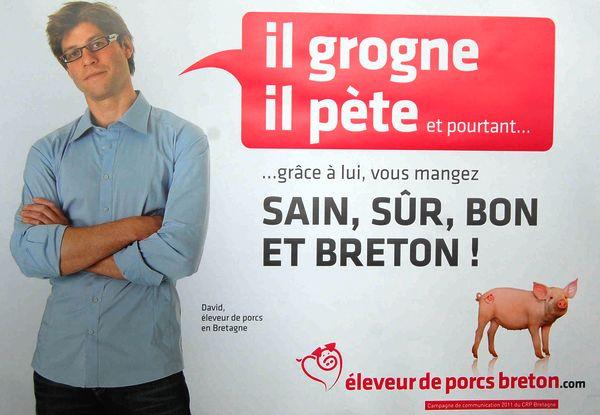 Cochon breton : humour Cochon10