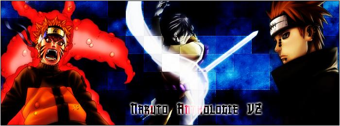 Naruto Anthologie V2