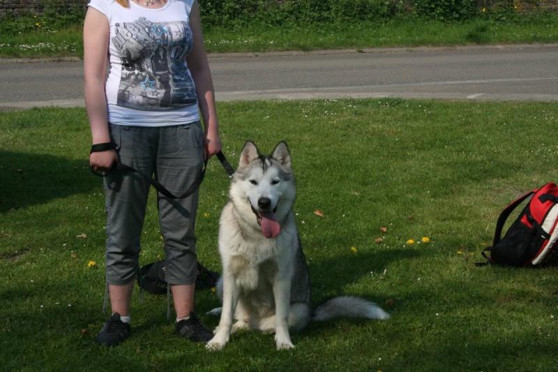 Nos loups grandissent, postez nous vos photos - Page 5 Pxr_2320