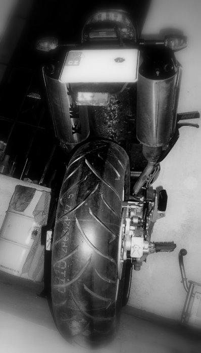 Pneumatiky Dunlop10