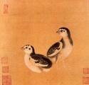 Drôles d'oiseaux 3210