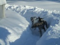 Premier hiver de Fay et Alice!!! Dscf0610