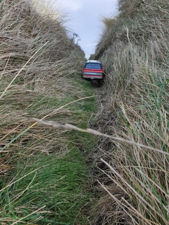 Spots scale et crawler dans le nord Cotentin (50) dans la Manche en Normandie 20200139