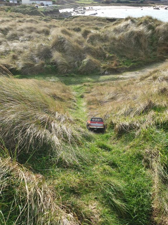 Spots scale et crawler dans le nord Cotentin (50) dans la Manche en Normandie 20200140