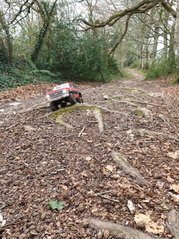 Spots scale et crawler dans le nord Cotentin (50) dans la Manche en Normandie 20200219