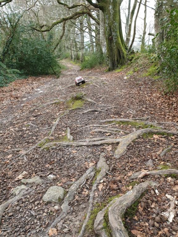 Spots scale et crawler dans le nord Cotentin (50) dans la Manche en Normandie 20200220
