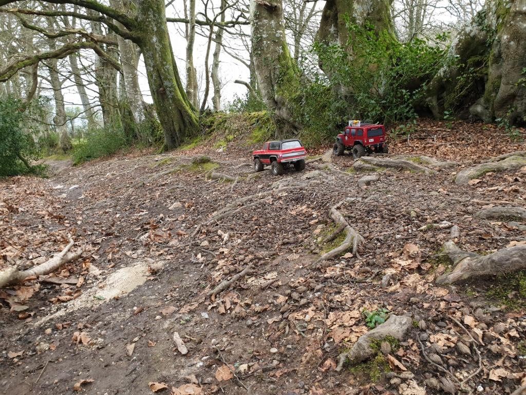 Spots scale et crawler dans le nord Cotentin (50) dans la Manche en Normandie 20200223