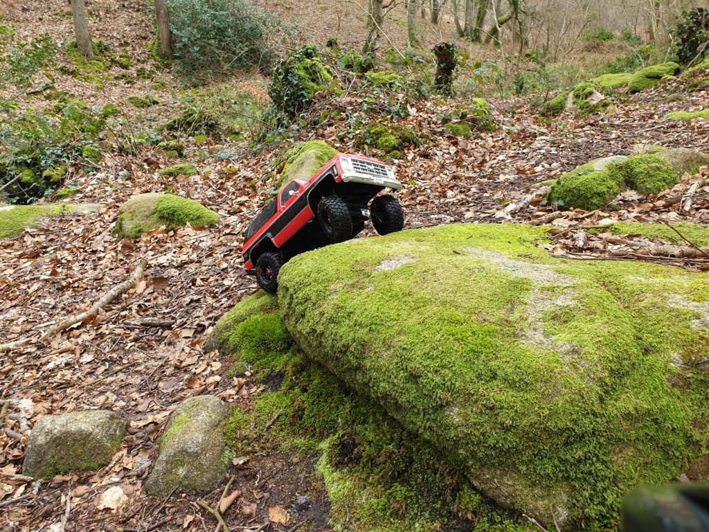 Spots scale et crawler dans le nord Cotentin (50) dans la Manche en Normandie 20200231