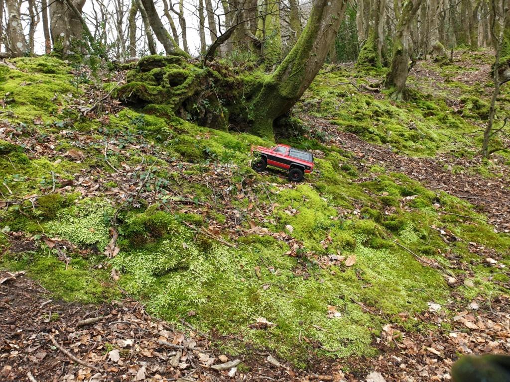 Spots scale et crawler dans le nord Cotentin (50) dans la Manche en Normandie 20200233