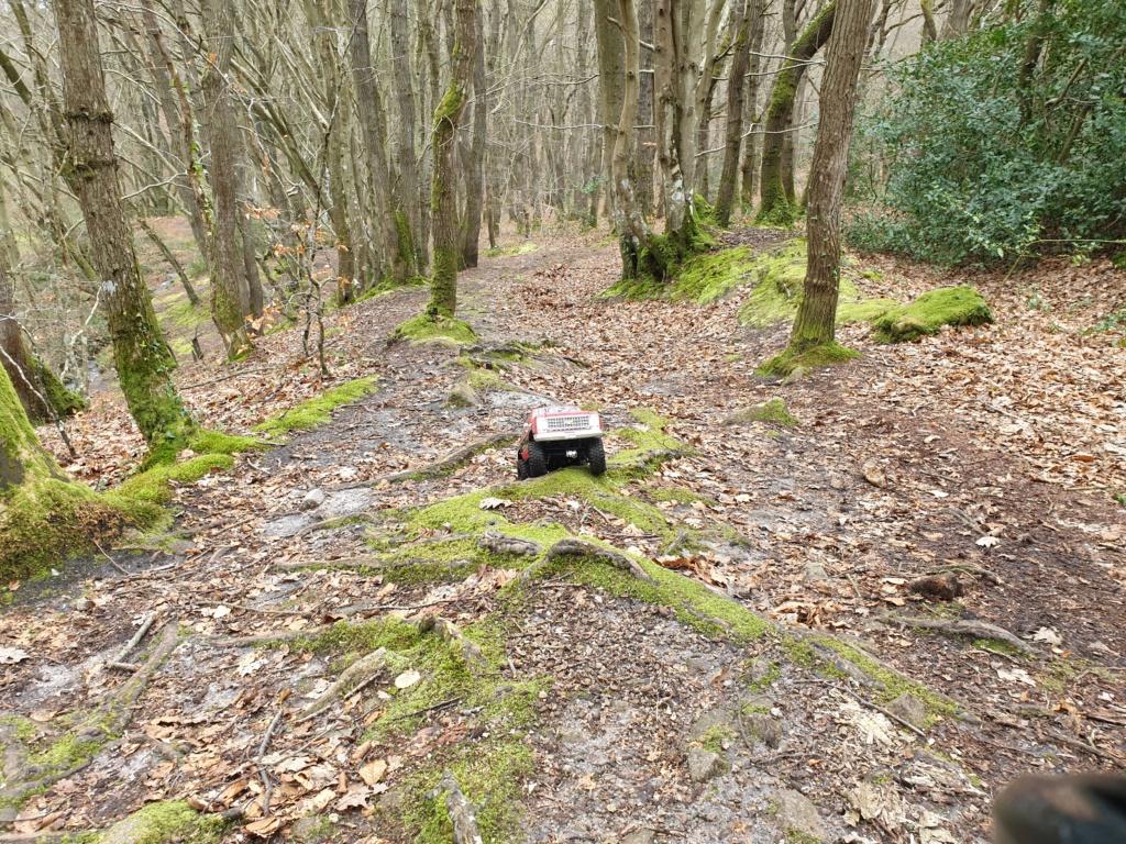 Spots scale et crawler dans le nord Cotentin (50) dans la Manche en Normandie 20200235