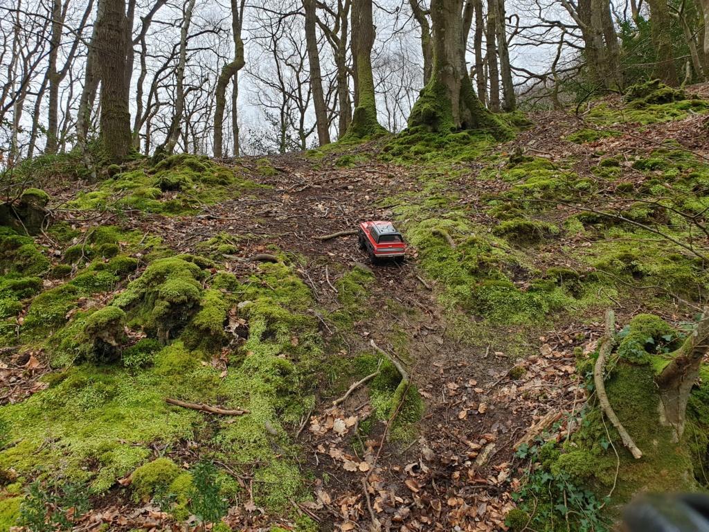 Spots scale et crawler dans le nord Cotentin (50) dans la Manche en Normandie 20200236