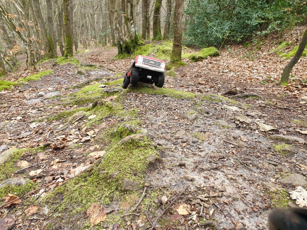 Spots scale et crawler dans le nord Cotentin (50) dans la Manche en Normandie 20200238