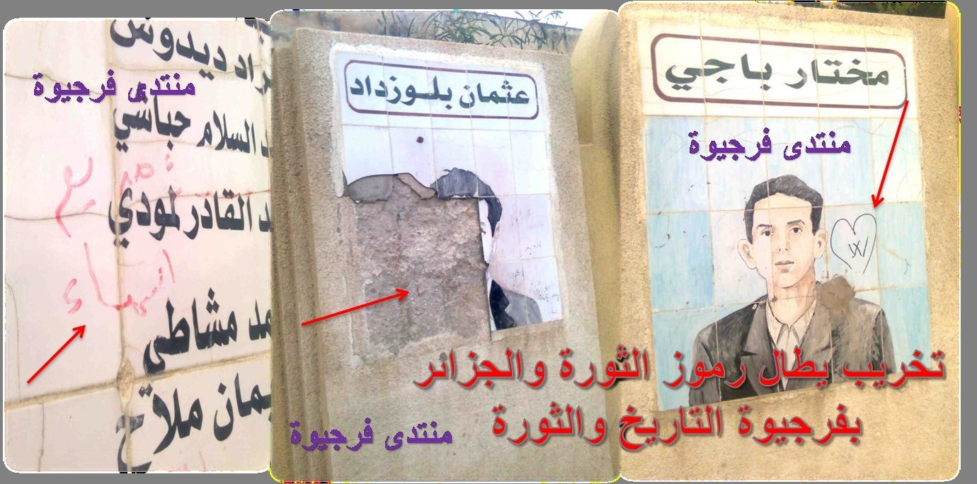 :: ملف :: //  التخريب يطال رموز الثورة بفرجيوة التاريخ أمر يستدعي القلق والحيرة ؟؟ 2010