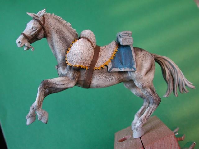 Cuirassier français à cheval Cheval11