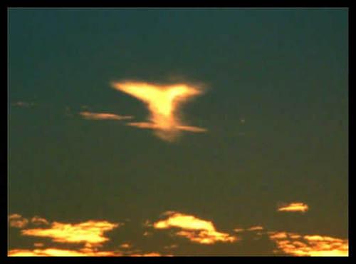 Listen & Observe Sunset10