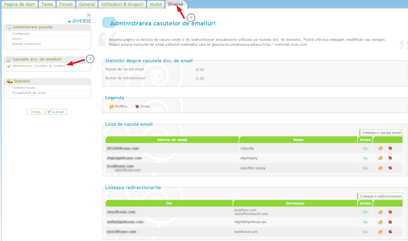 Nume de domeniu personalizat Nume_d11
