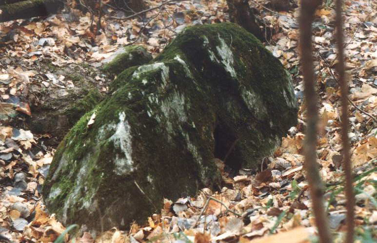 Камень Аусин Ausin-11
