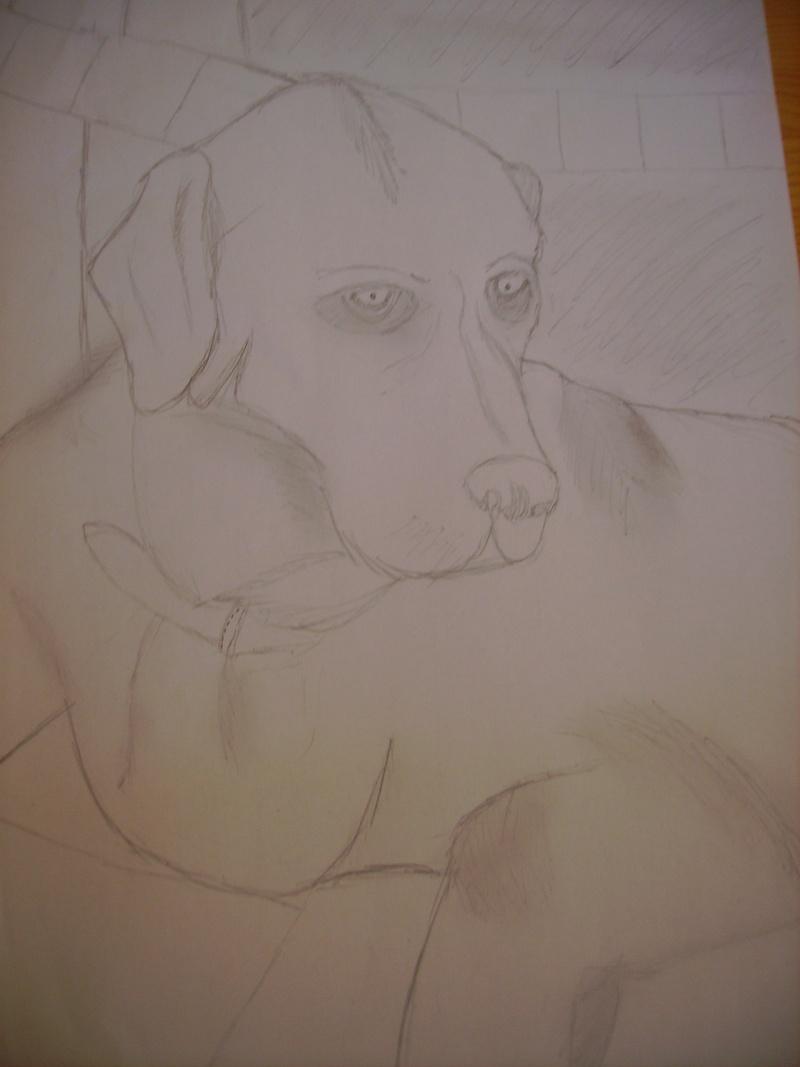 voila quelque dessin que j'ai fait ... Imgp0415