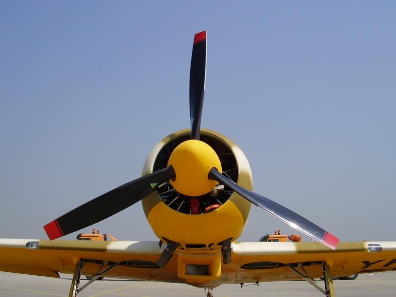 Mitinguri aeriene P4250010