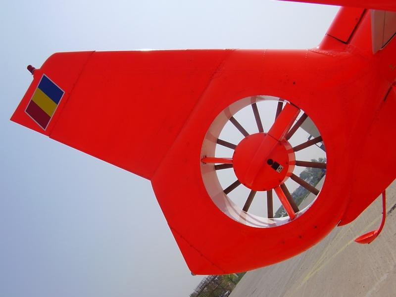 Mitinguri aeriene P4250013