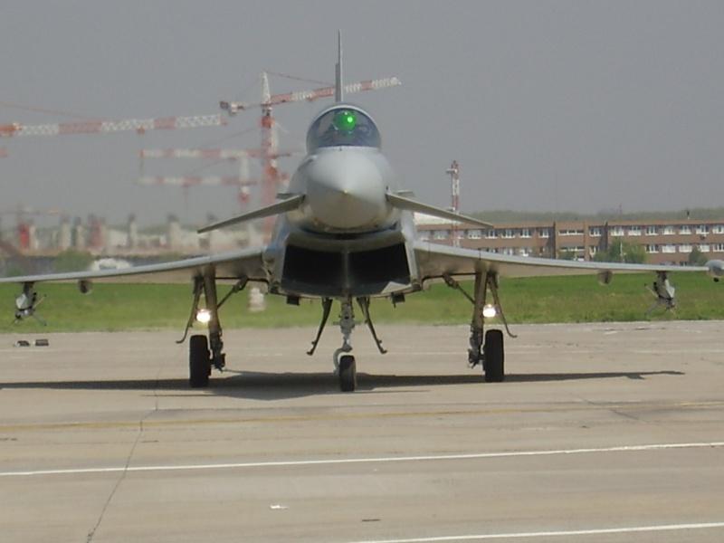 Mitinguri aeriene P4250110