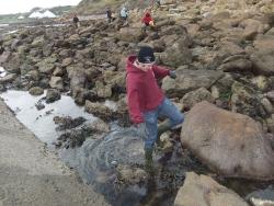 International Beach Clean up & PADI Project AWARE Dscf1314