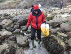 International Beach Clean up & PADI Project AWARE Dscf1317