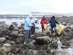 International Beach Clean up & PADI Project AWARE Dscf1318