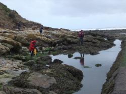 International Beach Clean up & PADI Project AWARE Dscf1326